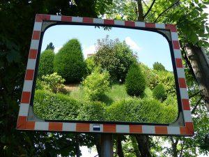 tükör-kert